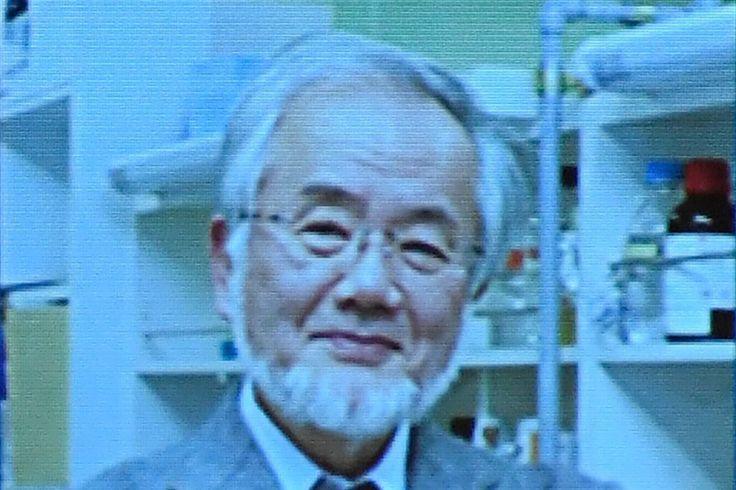 Wer erhält den Medizin-Nobelpreis - Basler Zeitung