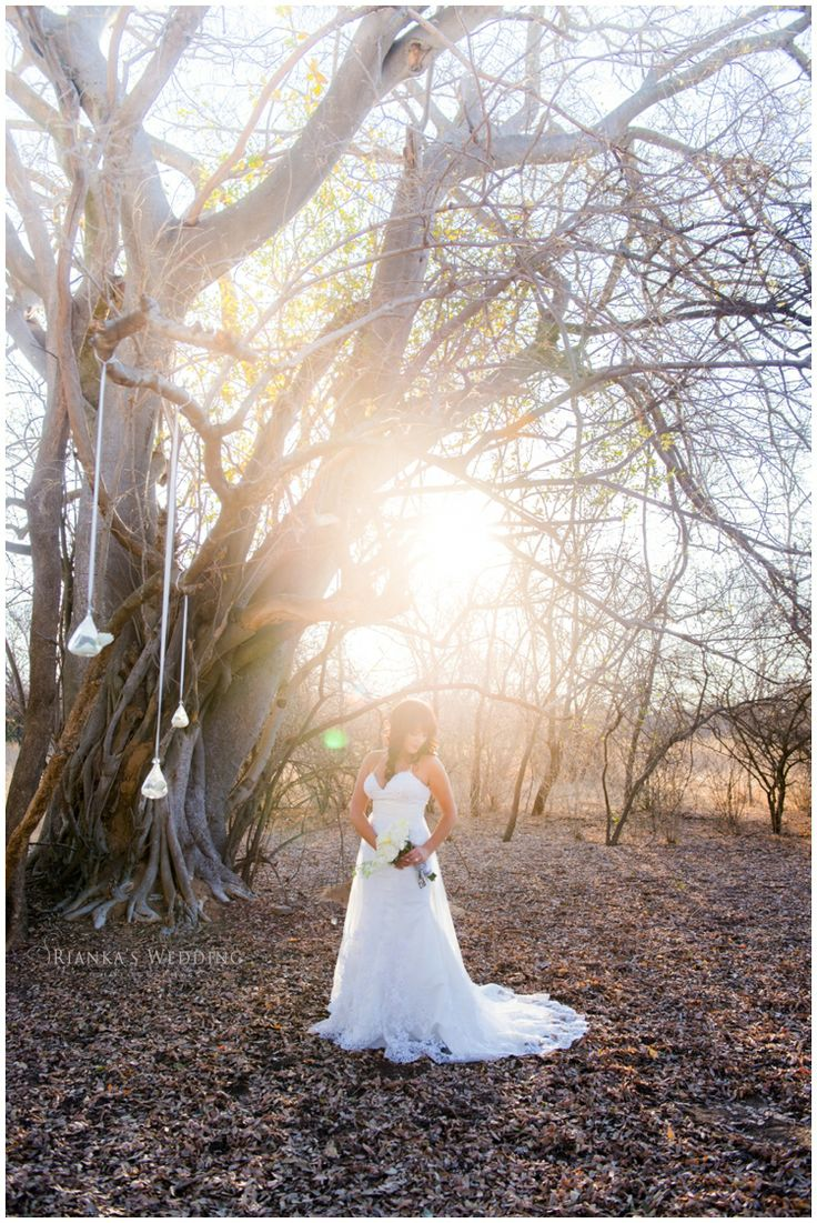 bride sunset | Bela Bela Game Lodge Wedding | Johannesburg Wedding Photographer | Rianka's Wedding Photography |Pretoria Wedding Photographer | Gauteng Wedding