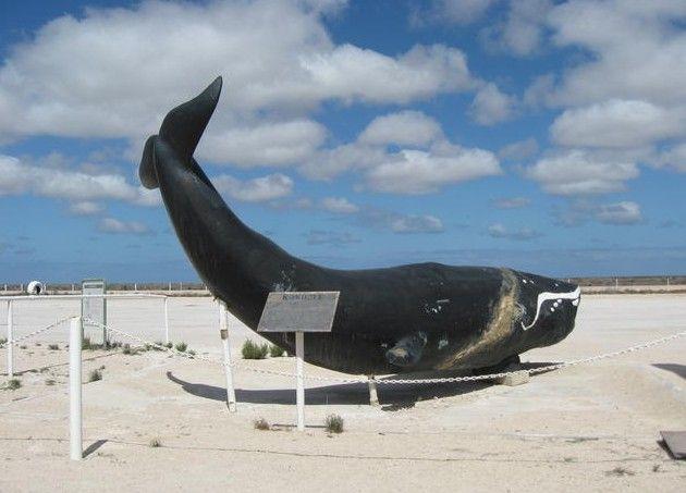 Big Things South Australia