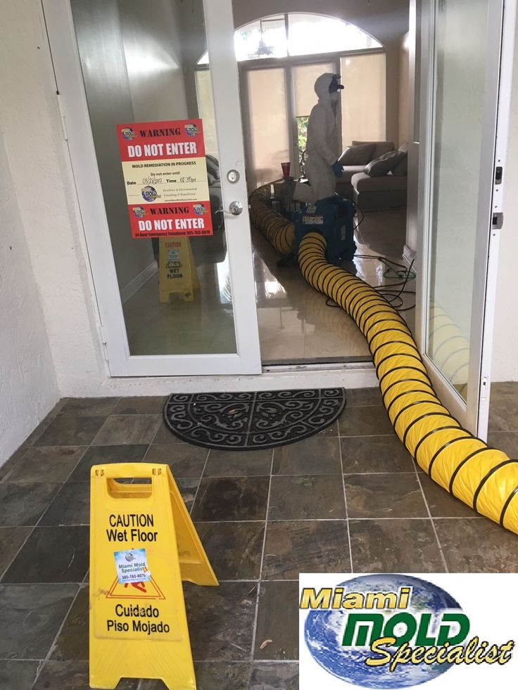 Looking for a mold removal company in Miami and Fort Lauderdale?  Miami Mold Specialist help residential and commercial building owners with all their asbestos and mold removal needs in Miami FL and surrounding areas. Whether it is inspection, testing, air quality or complete removal, the Mold Remediation Experts have you covered.