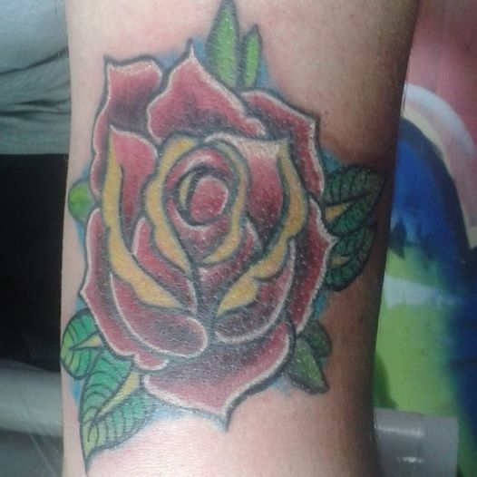 rose, cover up