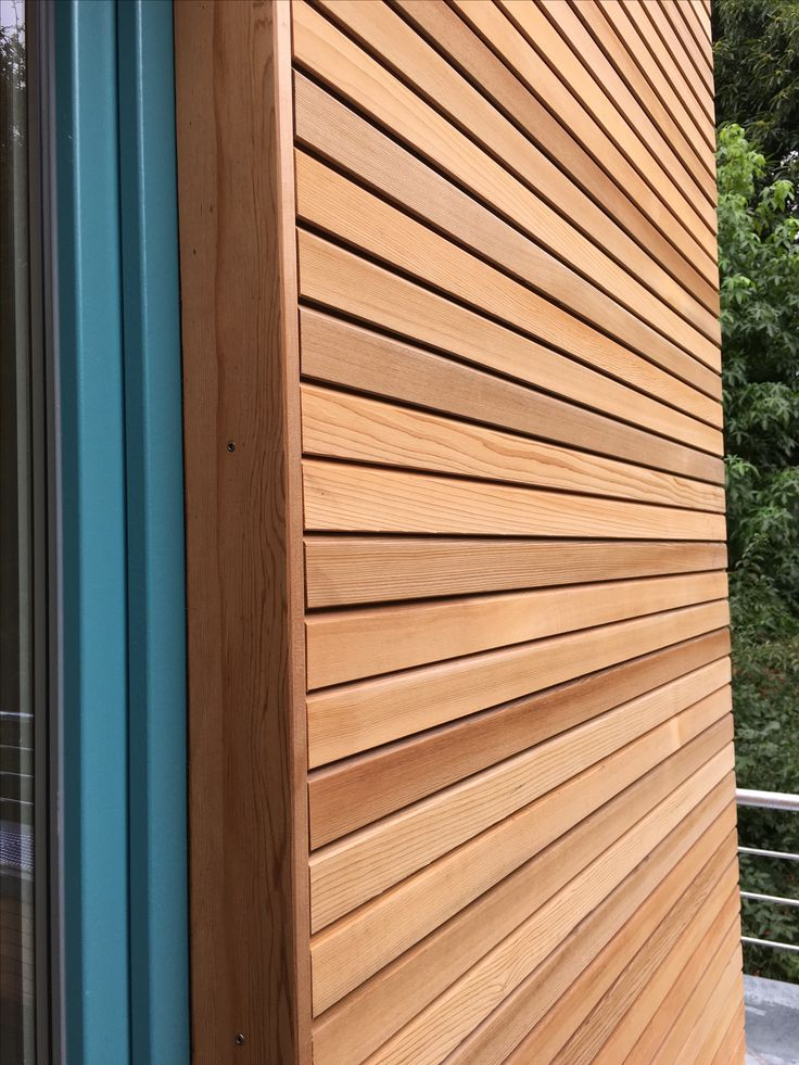 Western red cedar holzfassade cedar fix wood tree - Bardage red cedar ...