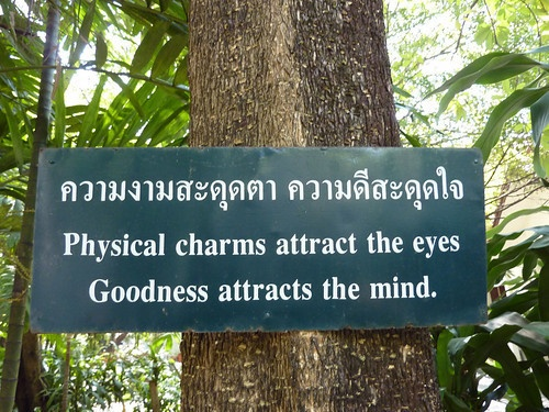 Physical charms attract the eyes Goodness attracts the mind.