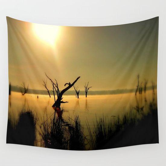 Lake, Dead Trees, Sun, Sun Rays, Golden Light, Fog, Mist, Reflections, Australia.