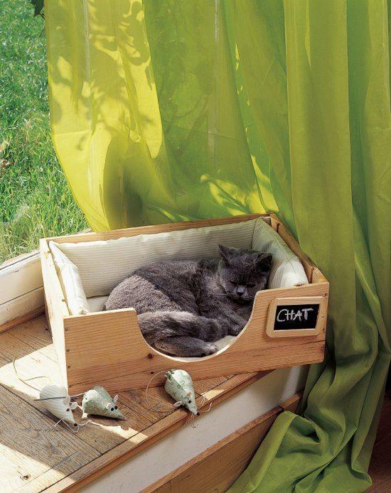 64 best kids bedrooms images on pinterest diy baby boy for Diy cat furniture