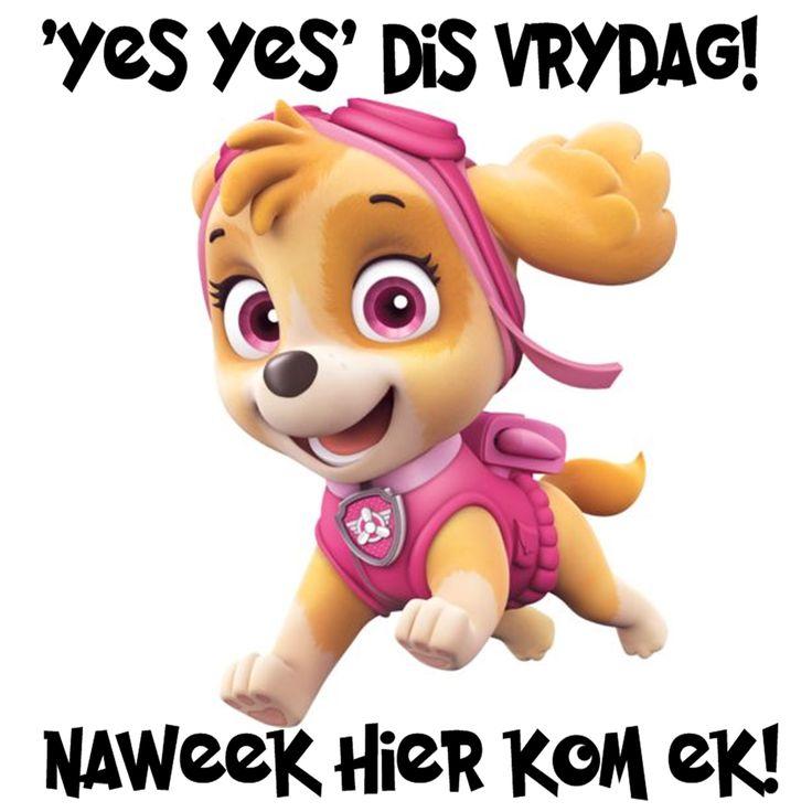 'YES YES' DIS VRYDAG! NAWEEK HIER KOM EK!