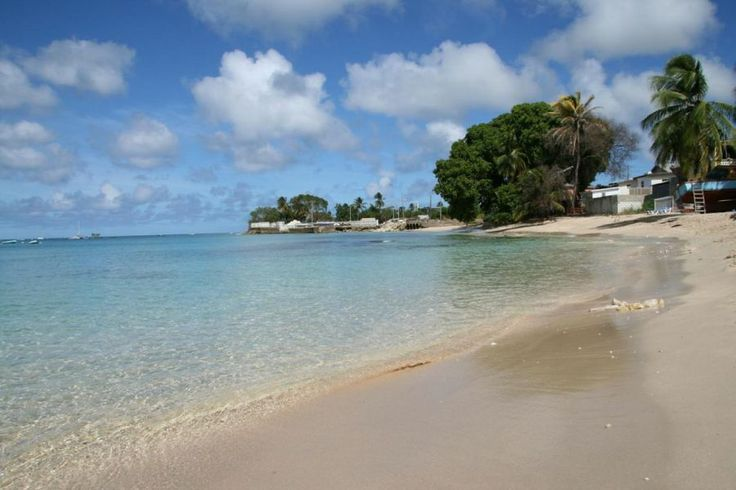 50 Best Beautiful Barbados Images On Pinterest: 58 Best Images About Barbados