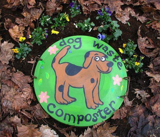 An eco-friendly way to dispose/compost the ever-present dog feces (especially with two hounds.)