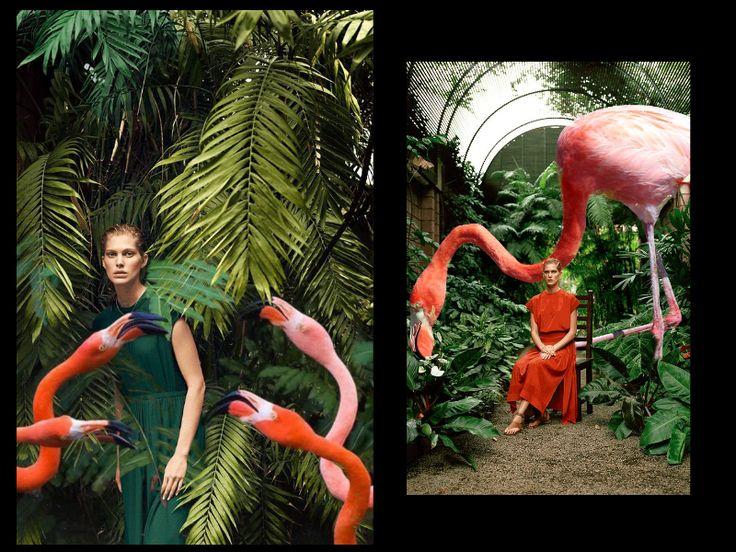 • Hermès - Vestiaire d'Été 2014 • digital collage with flamingos by Norlaura