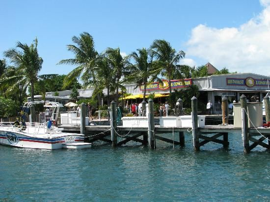 Conch Republic Seafood: Key West.  Fun place we had drinks and shrimp. YUM!
