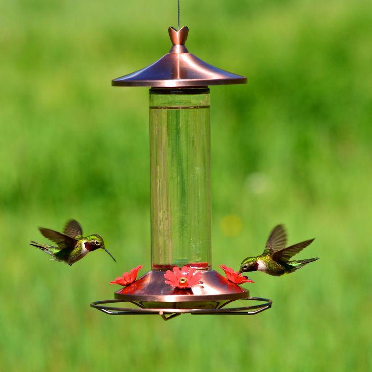 Perky-Pet® Elegant Copper Glass Hummingbird Feeder with Free Nectar