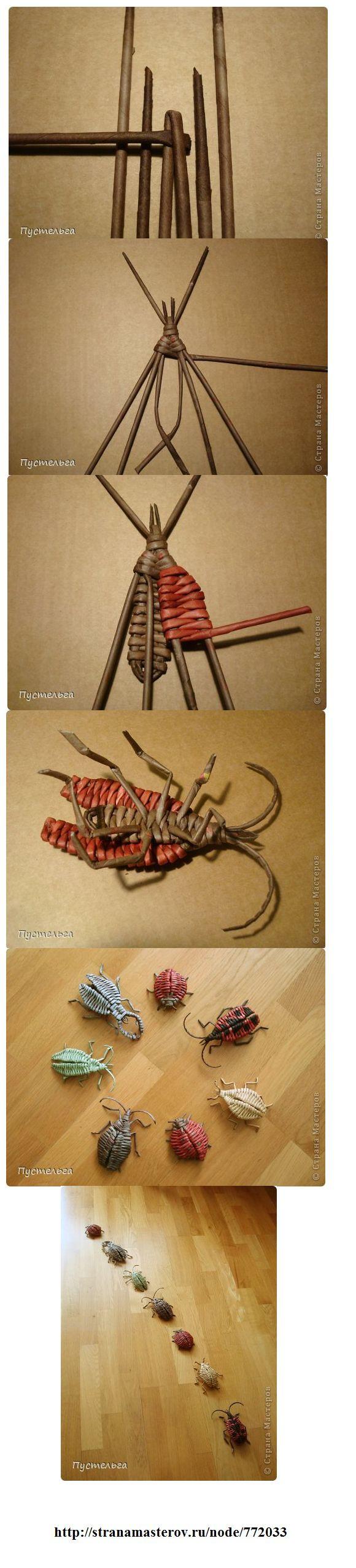 basket bugs/ woven wevels