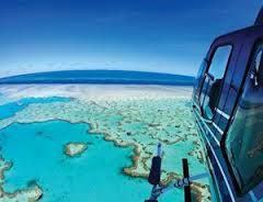 Image result for hamilton island reef