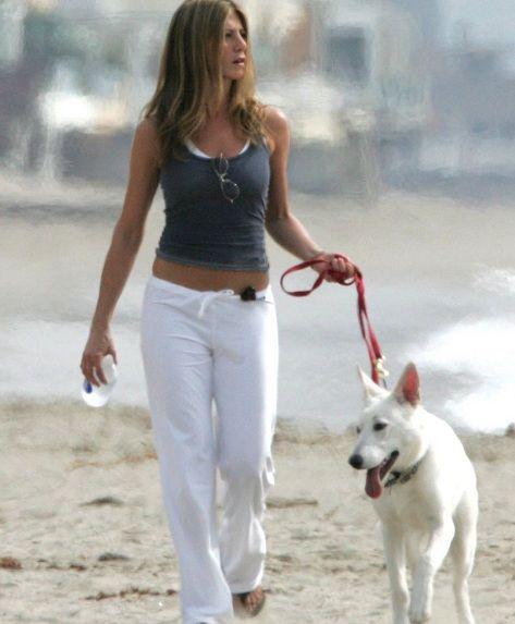 ~JENNIFER ANNISTON WITH HER WHITE GSD