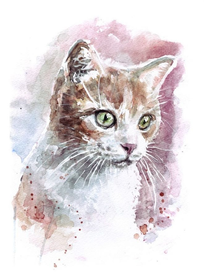 Hudozhnik Natasha Tateshi Pilipenko Watercolor Cat Cat Art