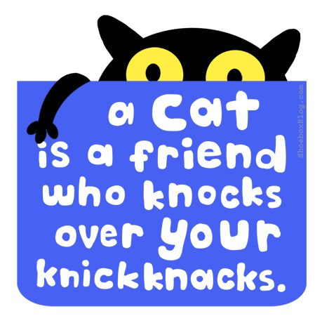 If I were to ever get a cat (which I probably won't) I  would name them Knick Knacks.