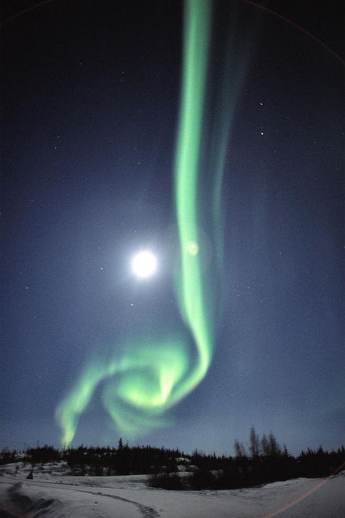 Aurora Borealis with Full Moon In Yellowknife, Northwest Territories,  Canada     Canada