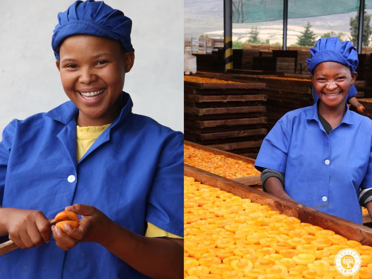 The people in Cecilia's Farm are as real as the mountains surrounding the farm, and they really do form the value chain that begins with the growing of fruit and ends with a fancy fruit pack. www.ceciliasfarm.co.za