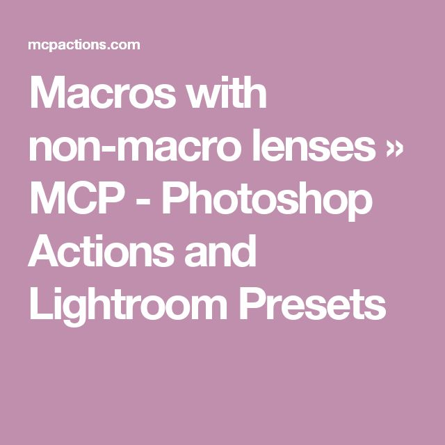 Macros with non-macro lenses » MCP - Photoshop Actions and Lightroom Presets