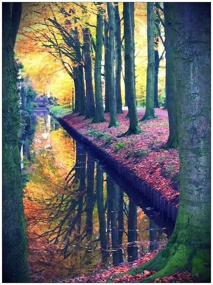 17 beste afbeeldingen over mooi twente op pinterest zoeken boerderijen en parken - Associatie van kleur e geen schilderij ...