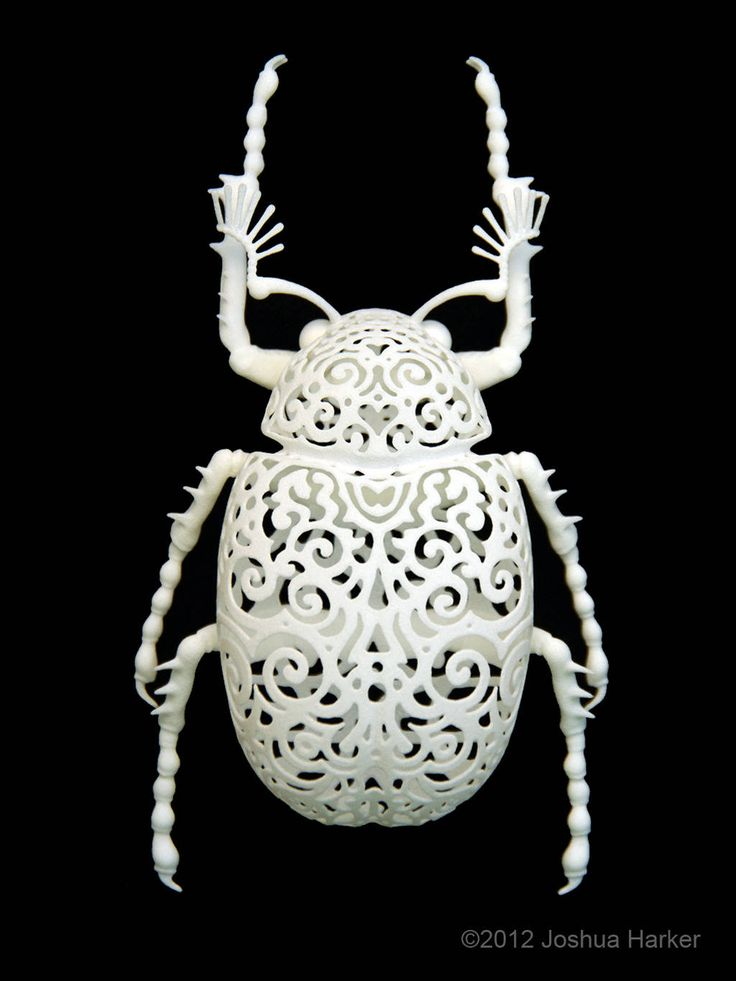Joshua Harker - Coleoptera Filigre Beetle (Large)