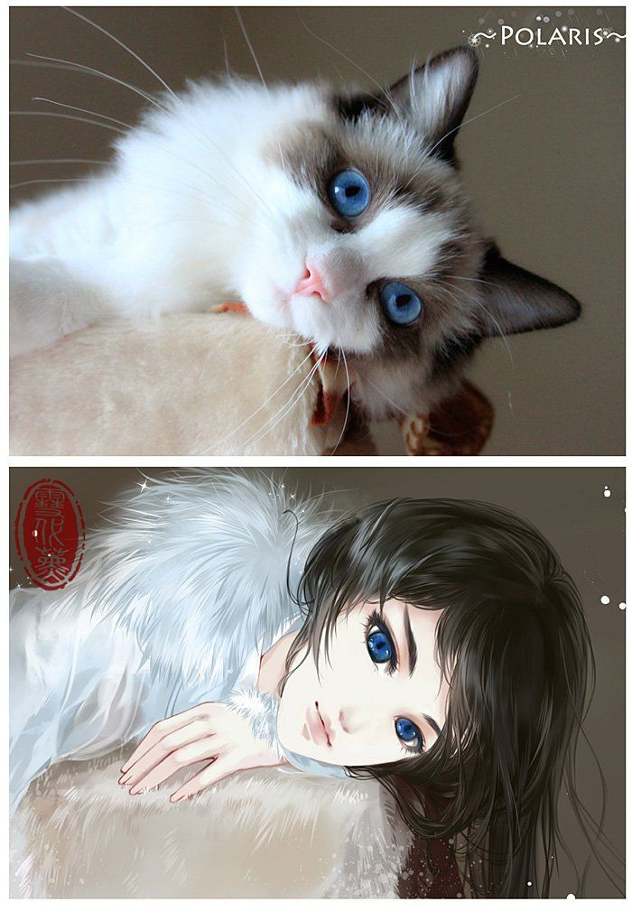 Artist-draws-adorable-kitties-as-anime-girls