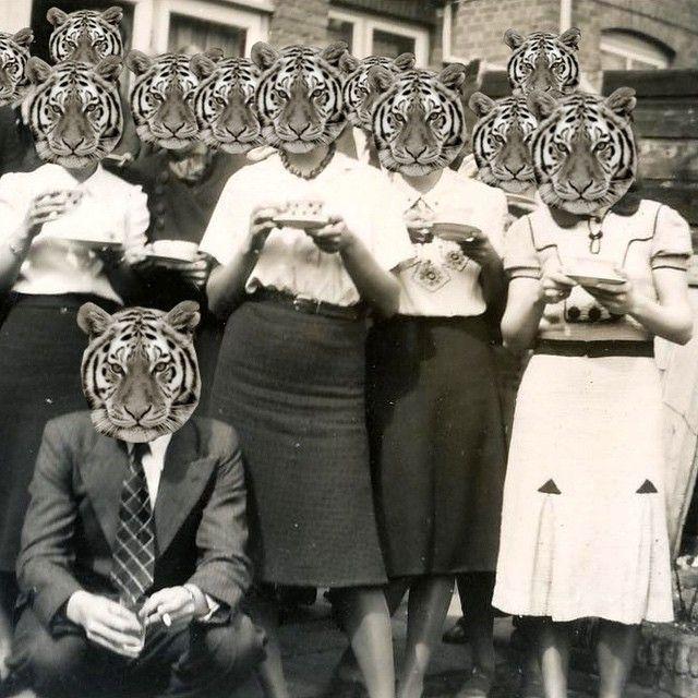 Fierce Tea Party by Marina Molares