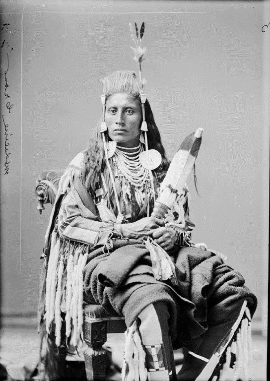 """In 1876, Medicine Crow, together with other 176 Crows joined general George Crook's troops and fought in the Battle of the Rosebud (according to Joe Medicine Crow, it was Medicine Crow to """"carry the pipe"""" for the Crow scouts, while Plenty Coups told Frank Linderman that he himself led the Crow warriors – Alligator Stands Up). Lt. John Bourke thus remembered the Crow leader """"…Medicine Crow, the Crow chief, looked like a devil in his war bonnet of feathers, furs and buffalo horns""""."""