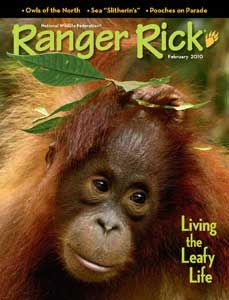 Ranger Rick magazine subscription for as low as $11.99 per year - Money Saving Mom®