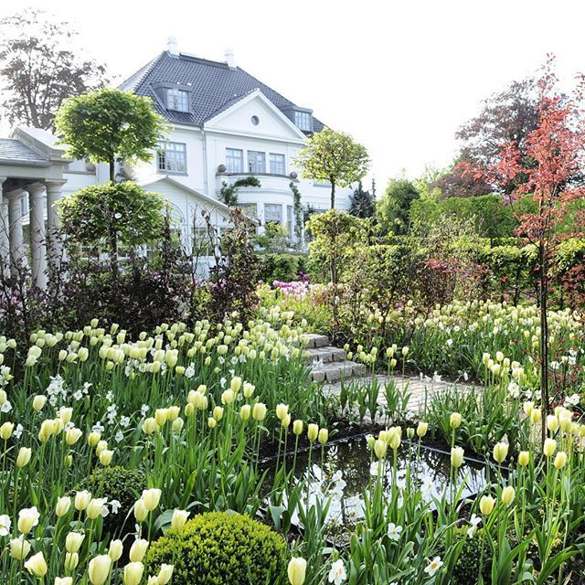 4184 best images about garden on pinterest