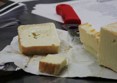 Limburger Cheese Review