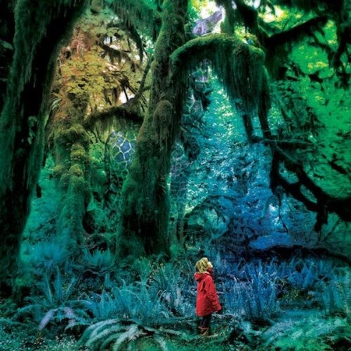 Jacco Gardner - Cabinet of Curiosities, cover by Sonny Kay