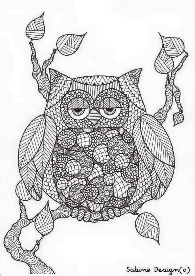 201 best Colouring OWLS images on Pinterest Coloring books
