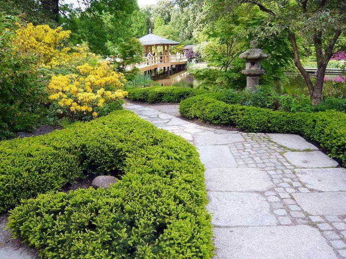 ogród japoński we Wroclawiu