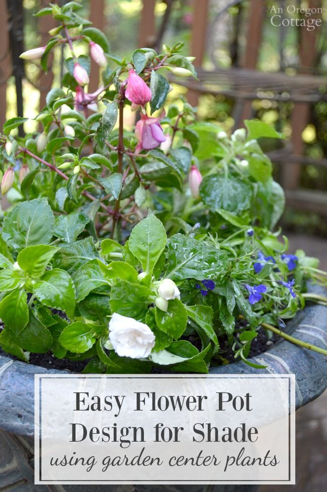 "Use this flower pot design for shade ""recipe"" and tips to easily plant a container with inexpensive garden center flowers that will look good all season."