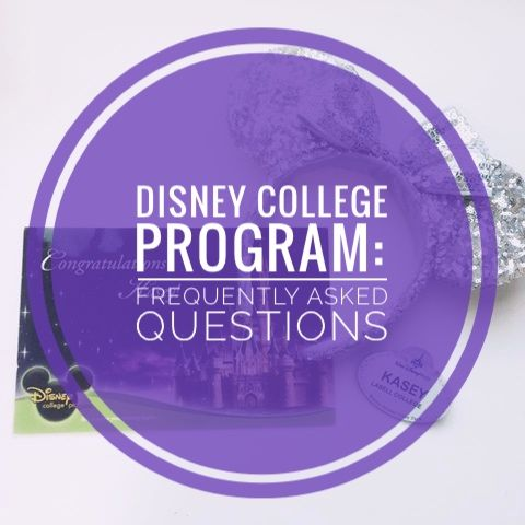 Disney College Program Frequently Asked Questions - Adventures In Adulting