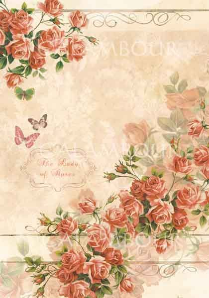 ✎peach floral background