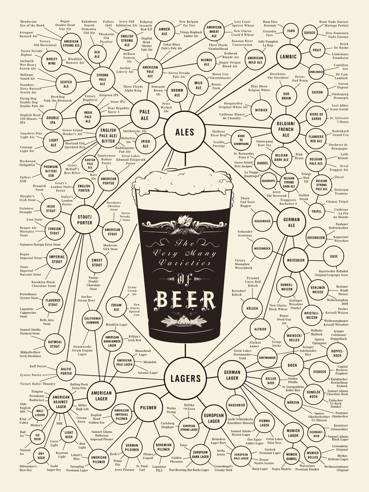 Infographic of the Day: Your Complete Guide to Beer | Co.Design: business + innovation + design