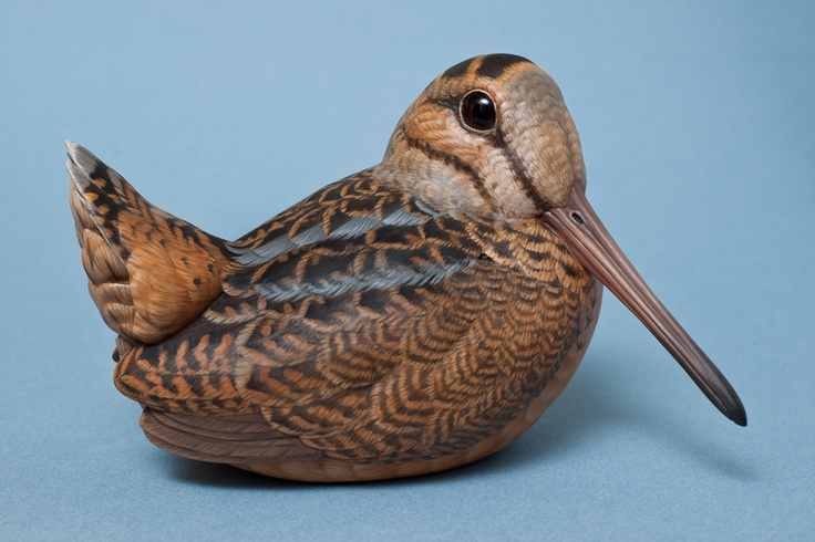American Woodcock Painted Woodcarving Robert Hand