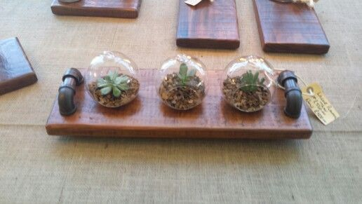 Steampunk inspired tray with three ass globes with succulents