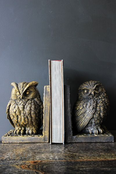 Owls are famous for their wisdom so what better to store your books than these beautiful Owl Bookends The bookends are created in vintaged resin and