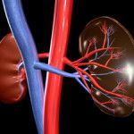 Whether it's a heart, lung, kidney or liver, many people assume that transplantation is a last resort in treating a failing organ.But in the case of kidney di