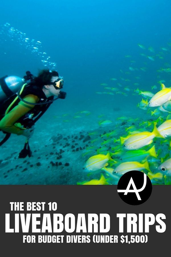 Best Budget Liveaboard Trips - Best Scuba Diving Destinations - Diving Bucket List - Adventure Vacations - Beautiful Locations and Places to Dive via @theadventurejunkies #scubadivinglocations