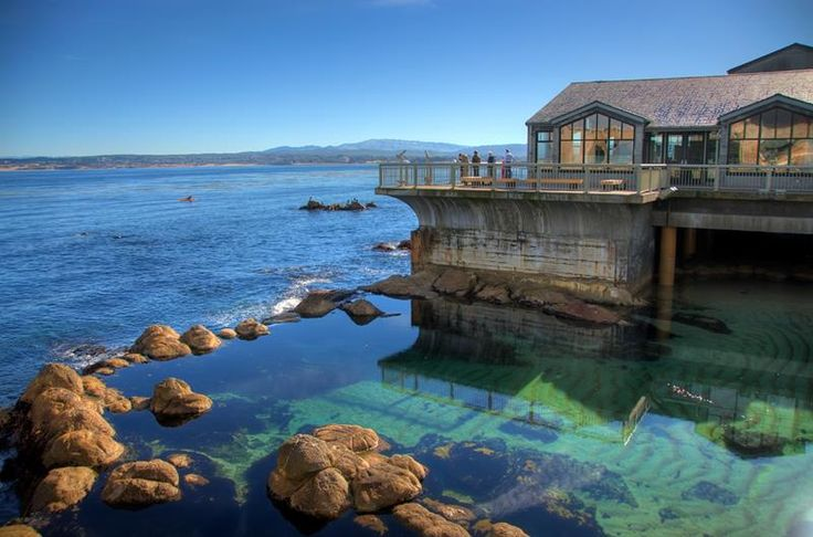 View of the great tide pool and viewing deck at the Monterey Bay Aquarium. California
