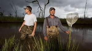 swamp people new season 2012