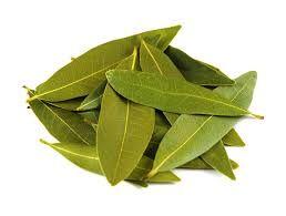 """Existuje mnoho různých rostlin, jejichž listy jsou označovány jako """"bobkový list"""", ale ten opravdový bobkový list je známý pod vědeckým jménem jako Laurus nobilis. Jde totiž od odrůdu, která je bohatá na živiny. Spoustu listů různých rostlin vypadají jako bobkový list, dokonce i stejné aroma."""