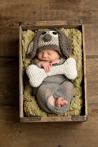 recien nacido - cachorro