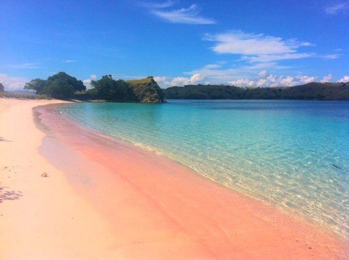 Pink beach, Flores - Indonesia. WOW!