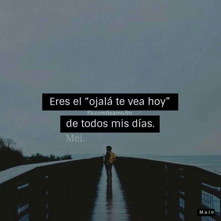 •Absolutamente de todos mis días• ♥