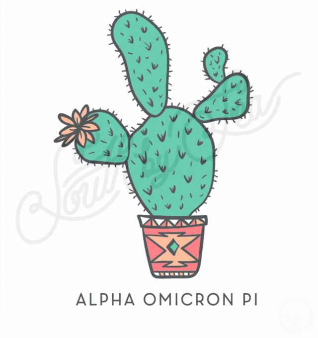 Alpha Omicron Pi | AOII | Cactus Design | Sisterhood | Recruitment | Bid Day | South by Sea | Greek Tee Shirts | Greek Tank Tops | Custom Apparel Design | Custom Greek Apparel | Sorority Tee Shirts | Sorority Tanks | Sorority Shirt Designs